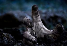 zombies hand dark night HD desktop background wallpapers jpg 1436