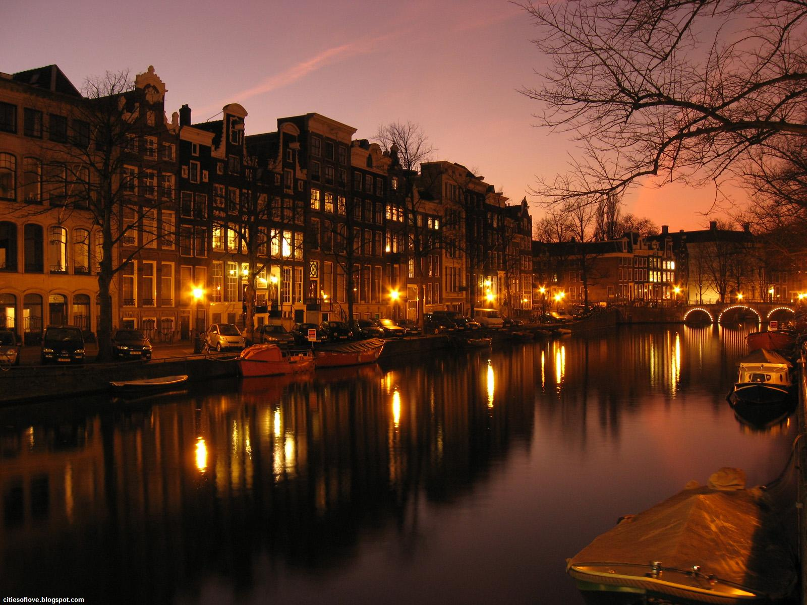 Lights And Ambience The Capital Of Netherlands Hd Desktop Wallpaper 1137