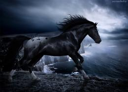 Free Download Free Dark Horse Download The HD Wallpaper 1223