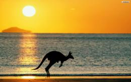 Australia Beaches Wallpaper 906
