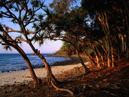 tea tree beach wallpaper australia world wallpaper 1280 960 1873 jpg 1258