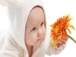 Cute Funny Baby WallPaper | Babies Pictures 1647