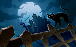 Black Cat Addetails Backgrounds Potsdamny Halloween Desktop wallpaper 934