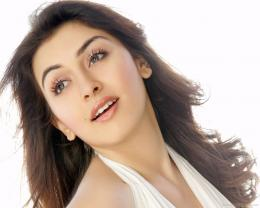 Hansika Motwani Wallpapers Bollywood Actress 1079