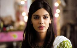 Diana Penty New Bollywood Actress Hd Desktop Wallpaper 1803