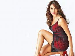 Mallika Sherawat Hot Bollywood Actress 1379