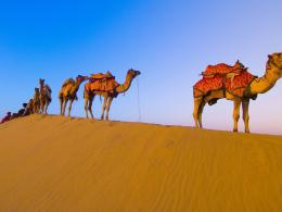Dubai Group Travel Packages | Travel Abroad Programs 1749