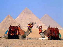 The inhabitants of Cairo are called Cairotes 1442