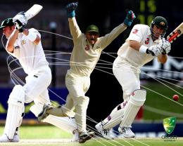 Cricket Wallpapers 273