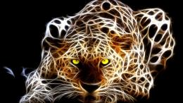 WallpapersHD Desktop Wallpapers Free Online: Animal Digital Art 487