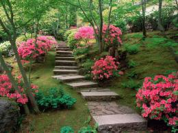 Japanese Garden Wallpapers fresh, size 1600 x 1200 108