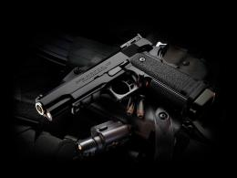 HD Wallpapers of Guns 869