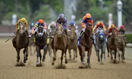 Sport Horse Race Kentucky Wallpaper HD 024 wfz is free HD wallpaper 1827