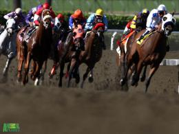 Race Time Horses Wallpapers 1374