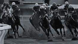 dec 25 1 year ago horse racing hd wallpaper jpg 548