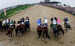 Horse Racing HD Wallpapers 981