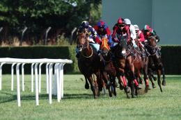 wallpaper of horse racing cool photo of racing horse horse racing 1374