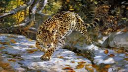 The jaguar spotted cat wold big animals 504