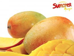 mango 22 wallpaper background hd| Images And Wallpapersall free 817