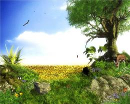 HD Animated Wallpapers 1734