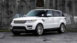 White Range Rover CarFree Choice Wallpaper : Free Choice Wallpaper 1052