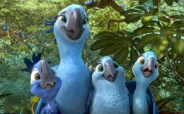 Rio 2 Movie 2014 nice Wallpaper Photos ~ Charming collection of Photos 1641