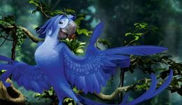 Rio 2 Movie HD Wallpaper, Rio 2 Movie BackgroundsNew Wallpapers 1171