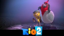 Rio 2 Movie Wallpaper | Hd Wallpapers 416