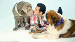 May 7, 2015 at 1920 × 1080 in Salman Khan HD Wallpapers 2015 887