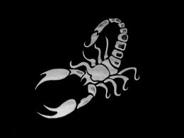 Scorpion HD Wallpapers 1834