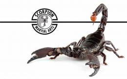 share to twitter share to facebook labels scorpion scorpion robot 1604