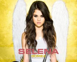Selena Gomez WallpapersPicwall 1376