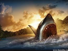 Animated Scary Shark HD Wallpaper 162