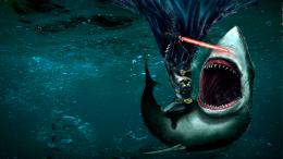 Shark HD Wallpapers 409