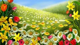Spring Beautiful Flowers Wallpaper | Free Desktop Wallpapers 839