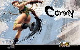 blogspot com%5D Super Street Fighter 4 HD Wallpapers 12 jpg 562