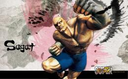com ar 423423fsdf Super Street Fighter 4 HD Wallpapers 015+ 27jpg 457