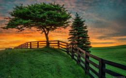 home natural landscape summer field sunset fence nature hd wallpaper 1013