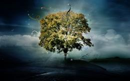 Download: Tree of Hope HD Wallpaper 956