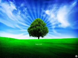 Wallpaper: Fresh Tree hd wallpapers 821