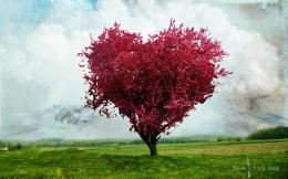 Love Tree Wallpapers HD Wallpapers 693
