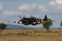 Spitfire Mk26b Supermarine Airplane Vintage hd wallpaper #878423 1732