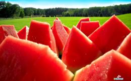 Watermelon Wallpapers Image Gallery | Watermelon Wallpapers wallpapers 1423