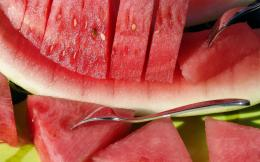 watermelon wallpapers 9367 1680x1050 jpg 1135