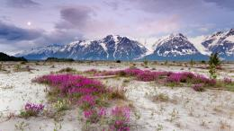 alaska wide high resolution new hd wallpapers free alaska photos 1587