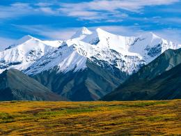 Denali National Park Alaska 1709