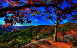 Best Scenery HD Wallpaper | Scenery Images Free | Cool Wallpapers 354