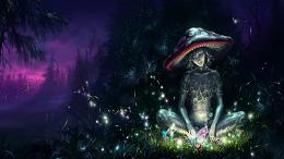 Fantasy The Free Mushroom HD Wallpaper 139