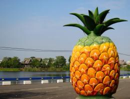 Download Pineapple Park wallpaper 696