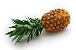 Pineapple Wallpapers 319